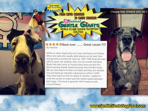 Gentle Giants Dog Food And Products Home