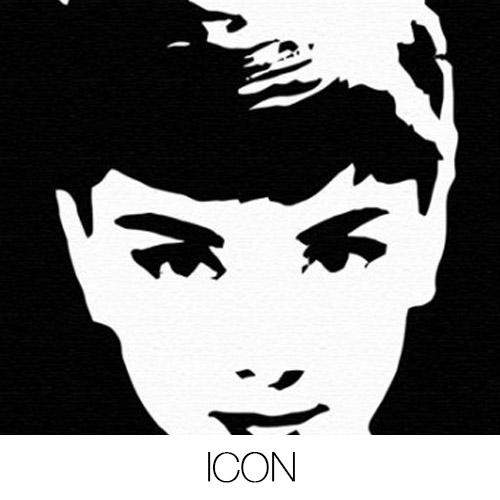 Icon Canvas Prints