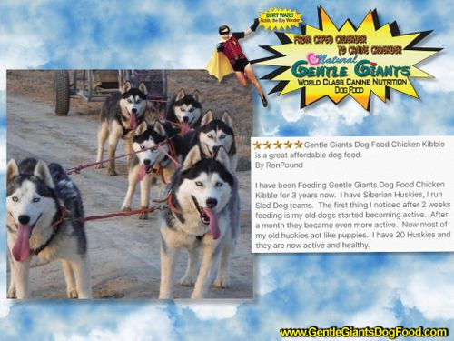 GENTLE GIANTS DOG FOOD AND PRODUCTS - Home
